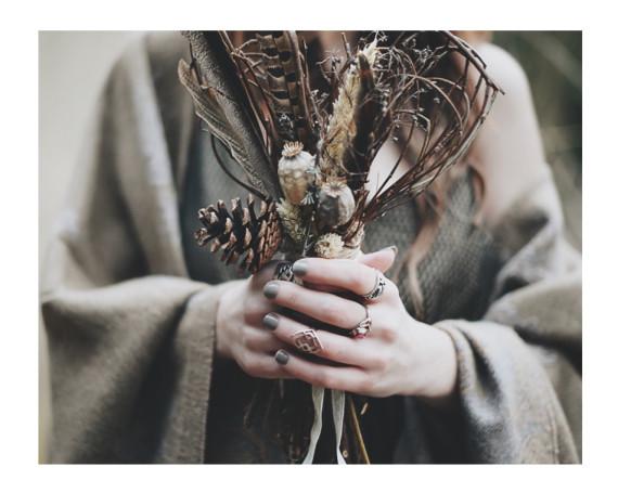 >> Wild + Free <<